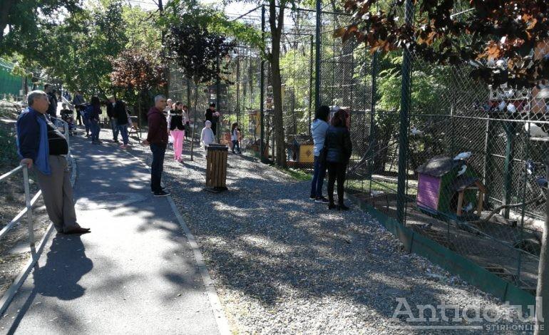 Halal tradiţie! Familia gălăţeană, în număr mare la Grădina Zoologică!