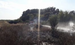 VIDEO Pompierii s-au luptat cu 127 incendii de vegetaţie în ultima săptămână