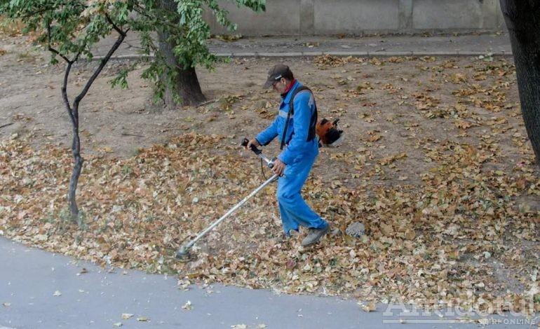 Măsuri de prevenţie. Angajaţii Gospodărire Urbană taie frunzele ca să nu crească iarba