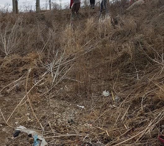 """""""Sărbători chinuite"""". Adăpostul Help Lăbuş, izolat de nepăsarea autorităţilor!"""