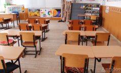 Gripa aduce vacanța în numeroase județe din țară. Școlile din Galați și Brăila rezistă