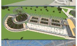 Încălzirea globală: gălățenii se vor răcori la umbra palmierilor și a lianelor