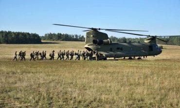 MApN: Exerciții militare multinaționale, în România