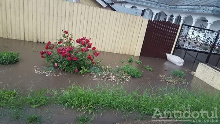 Pârâul Corozel face prăpăd: a inundat zeci de case din Corod și amenință localitatea Matca