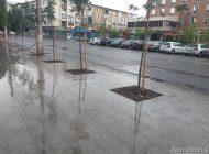 Gălățenii fac treaba Primăriei: câțiva cetățeni au smuls buruienile din centrul orașului Galați