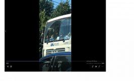 VIDEO/Ce chef de muncă are domnul din camion: la ora 10.00 își încălzea lăbuțele la soare