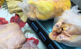 VIDEO Comercianții din Piața Basarabenilor au vopsit puii cu o substanță galbenă