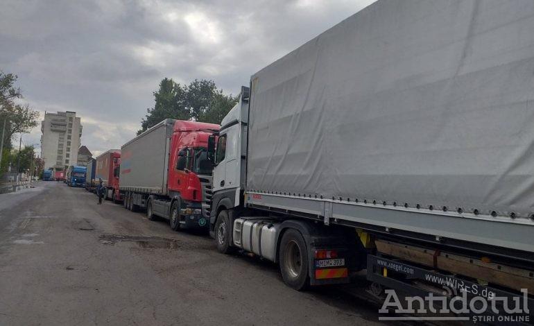 Grânele din Moldova lui Ștefan cel Mare se duc la export la frații musulmani