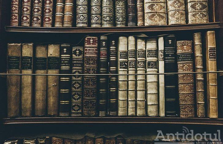 Biblioteca V.A. Urechia – facilitate în premieră pentru România