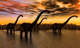 Absenteismul - comoara Jurassic Park-ului politic