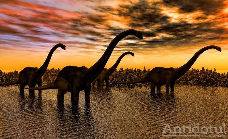 Absenteismul – comoara Jurassic Park-ului politic