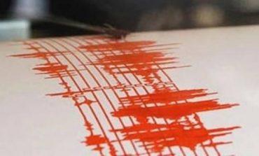 Cutremur cu magnitudinea 3,4 pe scara Richer în judeţul Buzău