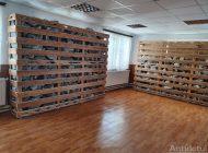 Aerosoli preșcolari: primarul din Tg.Bujor a construit o salină într-o grădiniță
