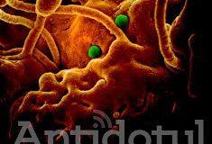 """Coronavirusul NU poate fi transmis de colete din China sau de animale de companie. Are el alte metode, printre care faza cu """"Mie nu mi se poate întâmpla!"""""""