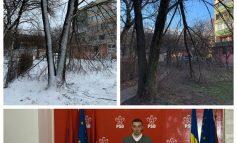 Dragoș Magearu își cam rupe creanga de Gospodărire Urbană