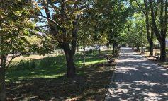 Imobiliare edilitare: Parcul Rizer și-a schimbat proprietarul pentru a fi modernizat