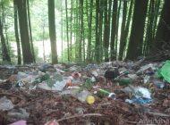 Mârlan din Galați, prins în timp ce arunca gunoiul în pădure