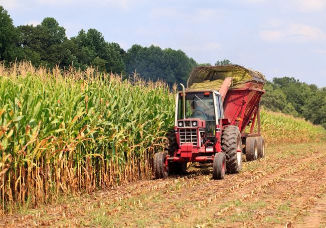 Lecție de agricultură: taxe triplate, exporturi anulate