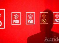 Surprize plăcute și neplăcute pe lista de candidați PSD
