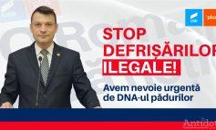 Pădurile României, comoara mafiei. Alianța USR PLUS militează pentru înființarea DNA-ului Pădurilor și Mediului