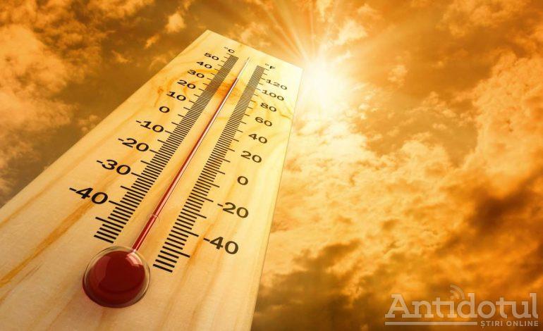 Iarna pe uliță: în preajma Anului Nou vor fi temperaturi de primăvară