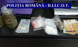 VIDEO Razii de amploare în lumea traficanților de droguri
