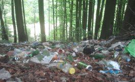 Recompensă de 100 de lei pentru fotografii / filmări cu grobieni care aruncă gunoaie pe drumuri naționale!