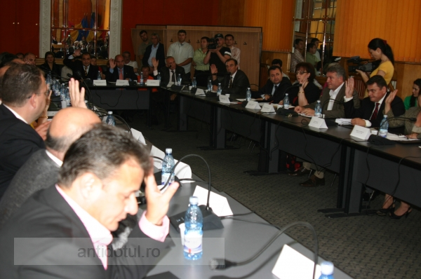Marmotele din Consiliul Local votează ca Primarul