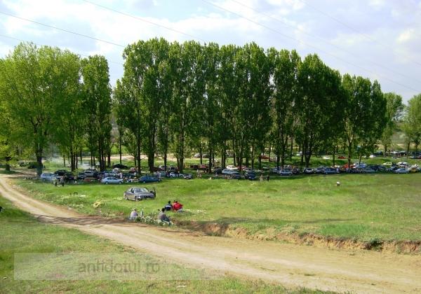 Galați – Brăila, în topul județelor despădurite