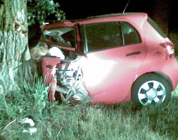 Fata doctorilor Chiscăneanu cîştigase la un concurs maşina cu care s-a zdrobit de copac