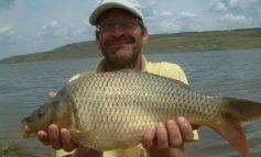 Concurs de belit capu la peşte
