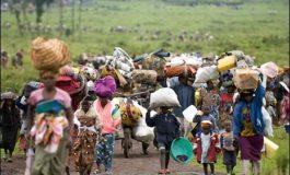 antidotul.ro organizează plecări în Congo