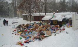 Din poză, evident, lipsesc gunoaiele de la Ecosal
