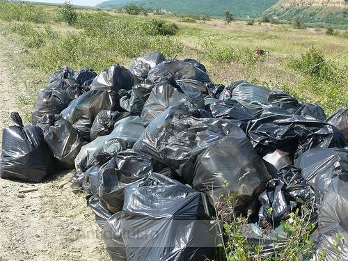 Elevii ecologişti au curăţat de pe urma bugetarilor petrecăreţi