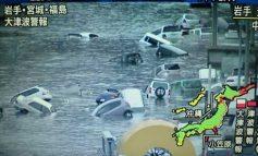 Cum le-a făcut celebre cutremurul din Japonia pe niște românce proaste