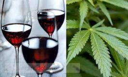 California se laudă cu vinul cu marijuana