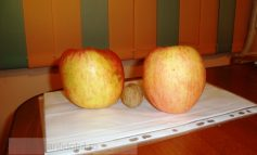 Pentru o viață sănătoasă consumați mere mari cît pepenii