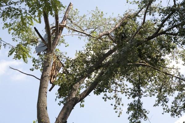 Autoritățile au fost puse la  treabă după o noapte furtunoasă