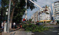 Un muncitor a murit în timp ce lucra la firele de tramvai (galerie foto)