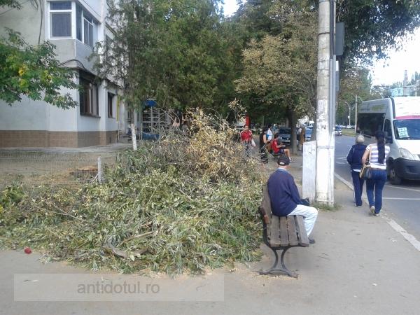 Nesimțirea directorului Eduard Grosu e mare cît trotuarul (foto)