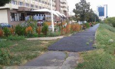 Trotuarul lui Marius Stan vs. trotuarul lui Istrate de la Vega 93 (foto)