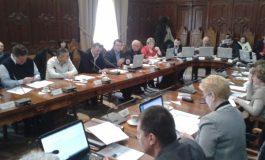PDL, partid de dilii: consilierii PDL s-au abținut cînd s-a votat excluderea lui Aramă
