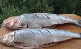 În plină prohibiție, omul de afaceri Traian Sandu a prins peștișorul de aur