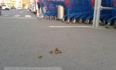 Shopping City Galați și-a schimbat proprietarul
