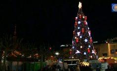 Cel mai înalt brad din lume pentru Crăciun 2014 (video)