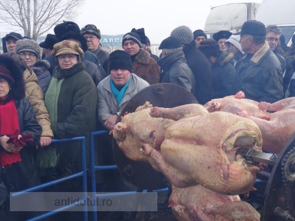 UPDATE/ Pomana Porcului 2014: puțini guțani la coadă (galerie foto)