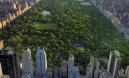 Central Park e o glumă proastă, în comparație cu Parcul Viva (foto)
