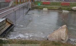 Lacul din Parcul Viva a înghețat. Crapii japonezi donați de Băilă sînt leșinați de frig