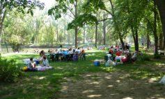 În curînd gălățenii vor pleca să caute loc de picnic la Brăila