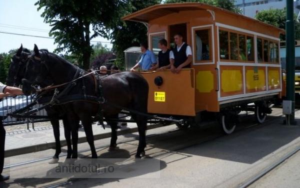 Primăria Galați cumpără la greu SH-uri, dar visează la autobuze electrice